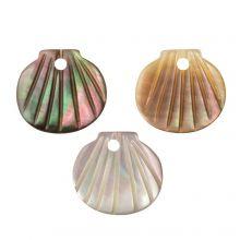 Breloque Coquillage (9.5 - 10.5 x 10 - 11 x 2 - 3 mm) Black Lip Shell (3 pièces)