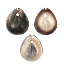 Breloque Coquillage (12 x 10 x 2.5 mm) Black Lip Shell (3 pièces)