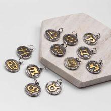 Breloques Signe du Zodiaque en Acier Inoxydable (18 x 3 mm) Argent Antique (12 pièces)