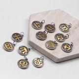 Acier Inoxydable Breloque Signe du Zodiaque (18 x 3 mm) Argent Antique (12 pièces)